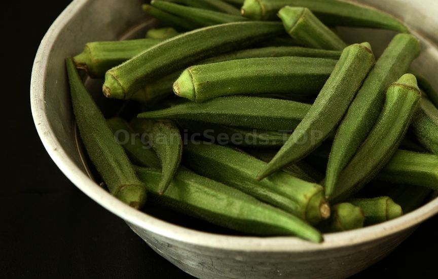 How to Growing Okra