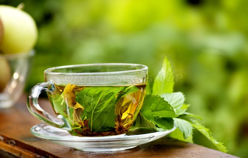 9 Amazing Benefits of Peppermint Tea