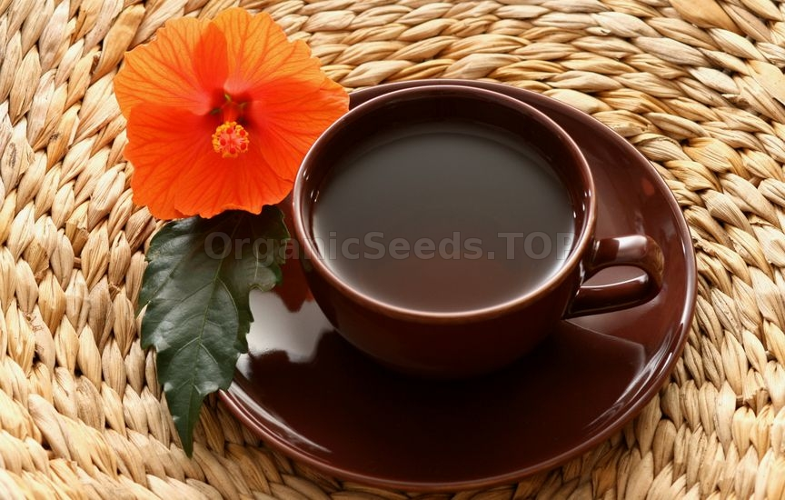 Benefits of Hibiscus Tea