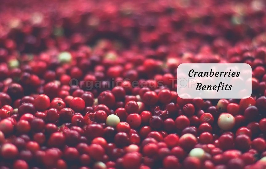 13 Benefits of Cranberries
