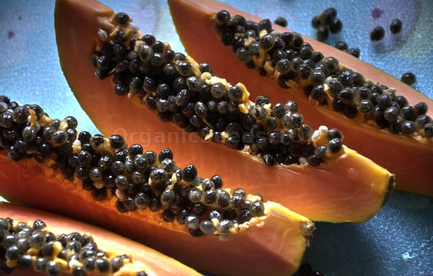 Benefits of Papaya Seeds