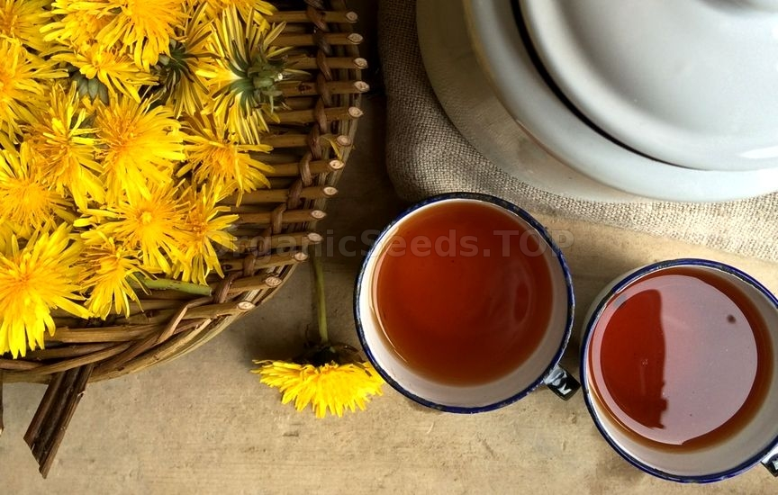 11 Benefits of Dandelion Tea