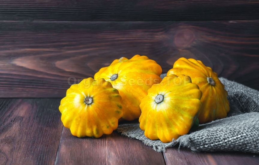 Tips For Growing Heirloom Squash
