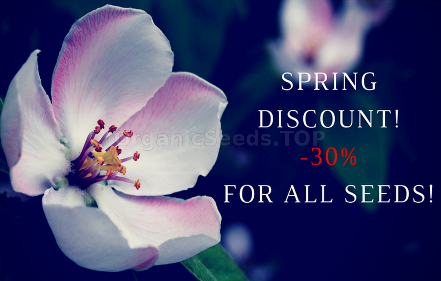 Spring discounts up to -30%