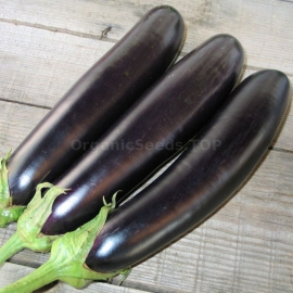 «Long Pop» - Organic Eggplant Seeds