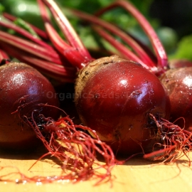«Diy» - Organic Beetroot Seeds