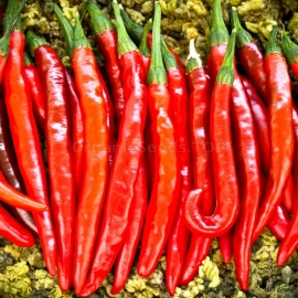«Cayenne» - Organic Hot Pepper Seeds