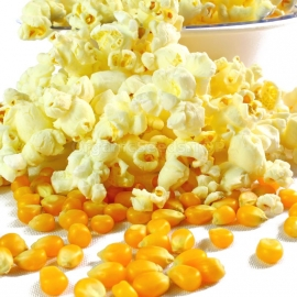 «Popcorn Yellow» - Organic Corn Seeds