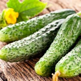 «Parizhskiy Kornishon» - Organic Cucumber Seeds