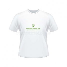 White Women's Branded T-shirt - ORGANICseeds™