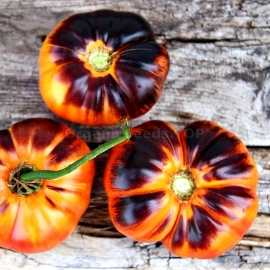 Фото «Afternoon Delight» - Organic Tomato Seeds
