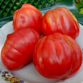 «Red Figs» - Organic Tomato Seeds