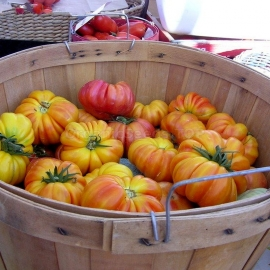«Marvel Striped» - Organic Tomato Seeds