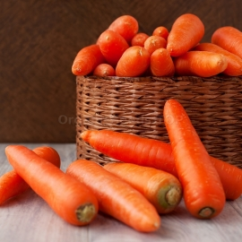 «Regulskaya» - Organic Carrot Seeds
