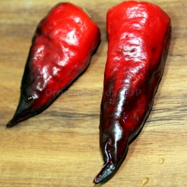 «Comstock Purple» - Organic Hot Pepper Seeds