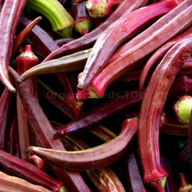 «Alabama Red» - Organic Okra Seeds