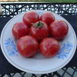 «Strawberry Tiger» - Organic Tomato Seeds