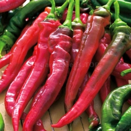«Goat Horn» - Organic Pepper Seeds