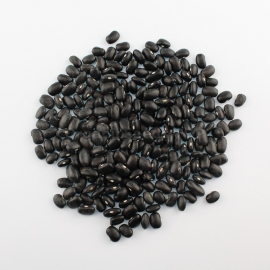 «Black turtle» - Organic Bean Seeds