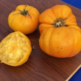 «Church yellow» - Organic Tomato Seeds