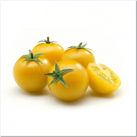 Фото «Cherry yellow round» - Organic Tomato Seeds