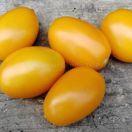 «Gourmet Yellow» - Organic Tomato Seeds