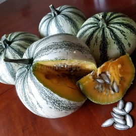 Фото «PIPIAN FROM TUXPAN» - ORGANIC PUMPKIN SEEDS