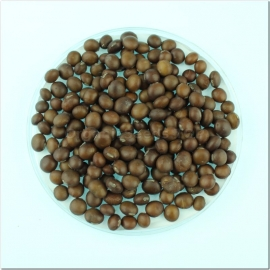 Фото «CHOCOLATE» - ORGANIC SOYBEAN SEEDS