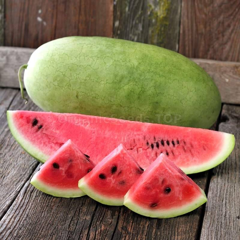 Chubby gray watermelon seeds #15