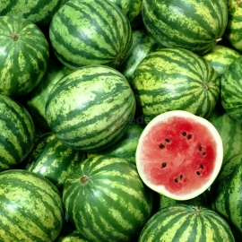 «Sicheslav» - Organic Watermelon Seeds
