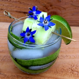 «Lemonade» - Organic Borage Seeds
