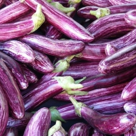 «Striped Long» - Organic Eggplant Seeds
