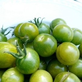 Фото «Green Doctors Frosted» - Organic Tomato Seeds