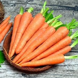 «Sweet Winter» - Organic Carrot Seeds