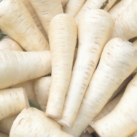 «Pulse» - Organic Parsnip Seeds