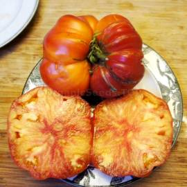 Фото «Mammoth German Gold» - Organic Tomato Seeds