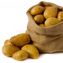«Farmer» - Organic Potato Seeds
